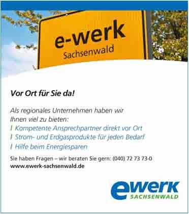 Hartmann-Marktplatz E-Werk Sachsenwald GmbH Hartmann-Plan